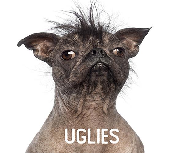 uglies thumb Copy